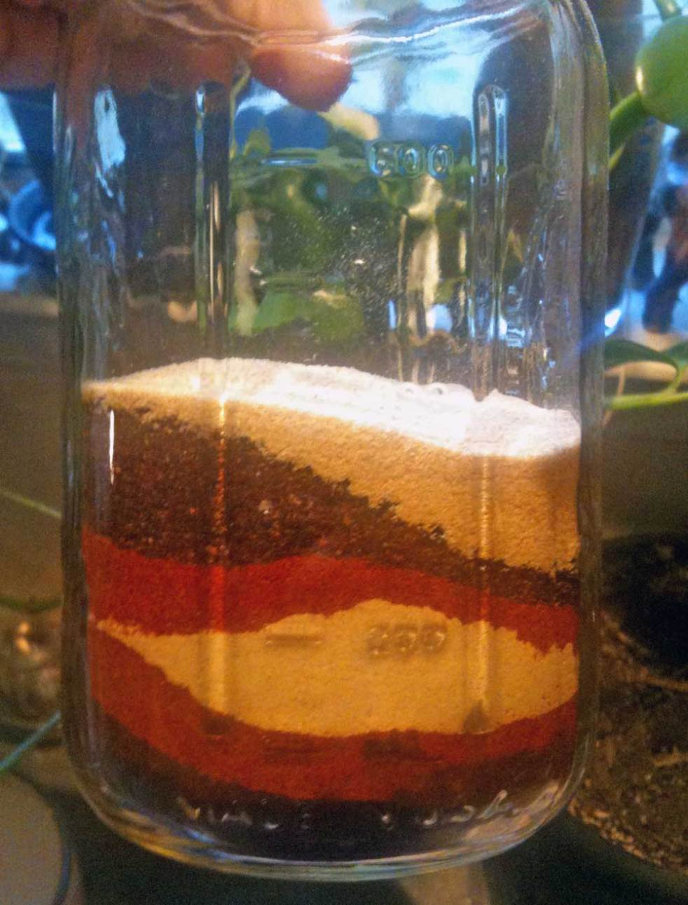 layered spices for fire cider