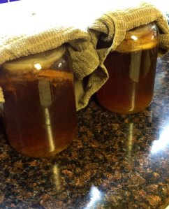 jars of kombucha